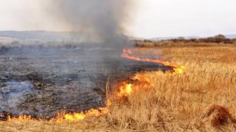 Вогнеборці попереджають, алюди все одно палять