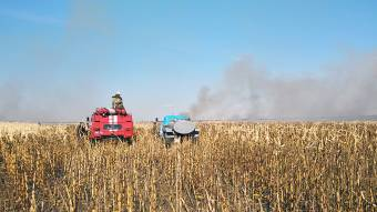 У Машівському районі горіло кукурудзяне поле