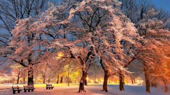Полтавців запрошують до участі у фотовиставці на зимову тематику