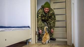 Для військових у Миргороді збудують житло