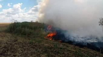 Частину Кобеляцького району охопила пожежа