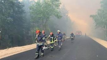Понад 50 полтавських рятувальників допомагають гасити лісові пожежі на Луганщині