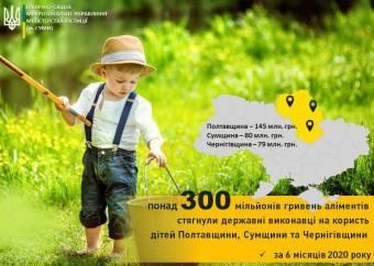 Держвиконавці Полтавщини за півроку зтягли з боржників понад 145 мільйонів гривень аліментів