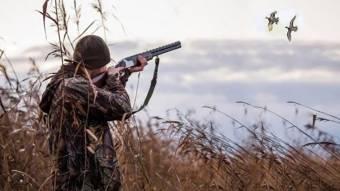 Полювання «на качку» обійдеться мінімум у 70 гривень