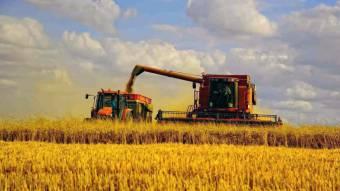 Полтавщина ввійшла в топ-5 областей України за обсягом капітальних інвестицій в АПК