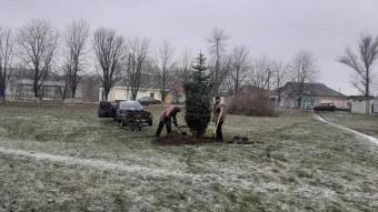 У трьох громадах уже встановили новорічні ялинки
