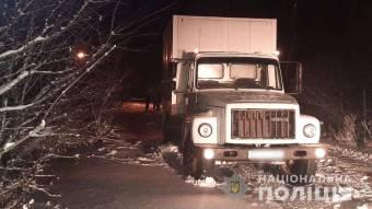 На Карлівщині вантажівка збила пішохода