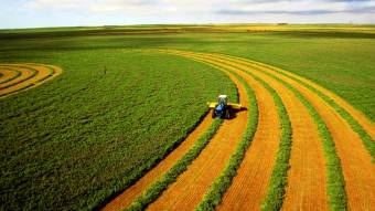 Ціна української землі в 2021 році: У Мінагрополітики озвучили цифру