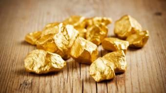 Бактерія, що перетворює метал у золото