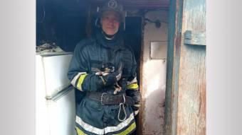 Рятувальники загасили пожежу і врятували цуценя