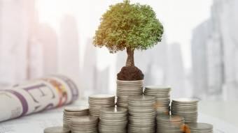 Інвестиції в Полтавську область надходять із 42 країн світу