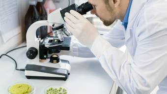 Техническое оснащение лаборатории: микроскоп, дистиллятор, пипеточный дозатор
