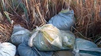 Поблизу Солошина знайшли браконьєрські сітки