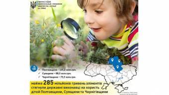 На Полтавщині примусили заплатити аліментів уже на 285 мільйонів гривень