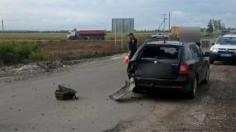 Поблизу Котельви в ДТП загинув мотоцикліст