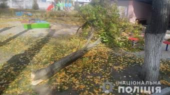 У Кременчуці у дитячому садочку на двох дітей впало дерево