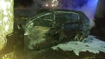 На Миргородщині автомобіль врізався у дерево – водій загинув