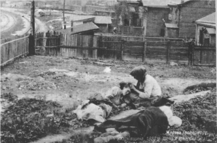 колективізація сільського господарства голодомор 1932-33 термобелья том
