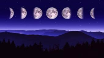 Місячний календар садівника на червень